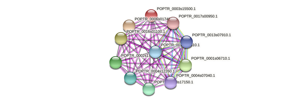 POPTR_0003s15500.1 protein (Populus trichocarpa) - STRING interaction network