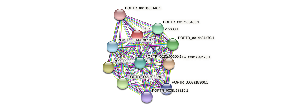 POPTR_0003s15630.1 protein (Populus trichocarpa) - STRING interaction network