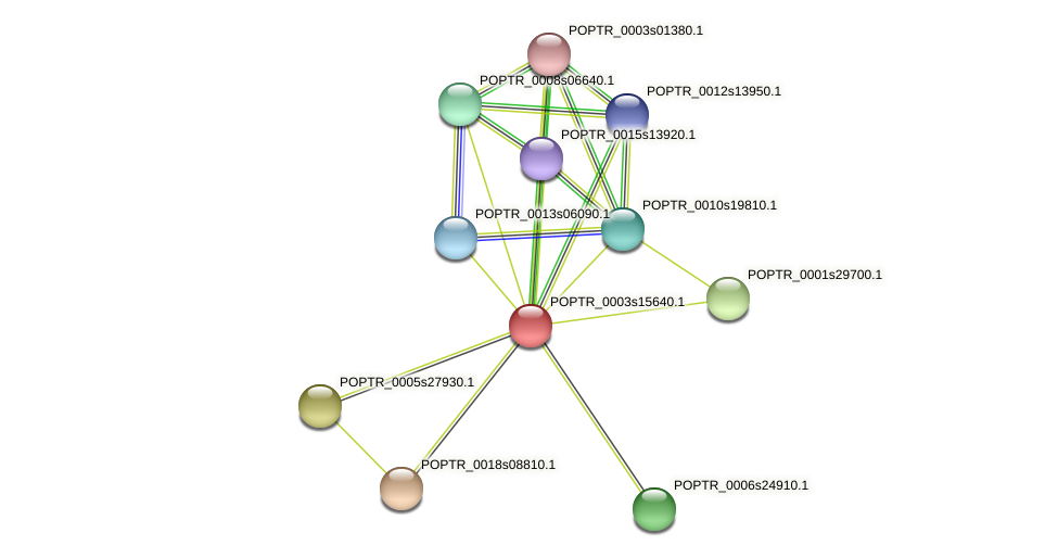 POPTR_0003s15640.1 protein (Populus trichocarpa) - STRING interaction network