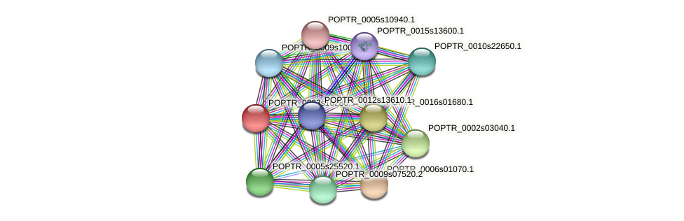 POPTR_0003s16280.1 protein (Populus trichocarpa) - STRING interaction network