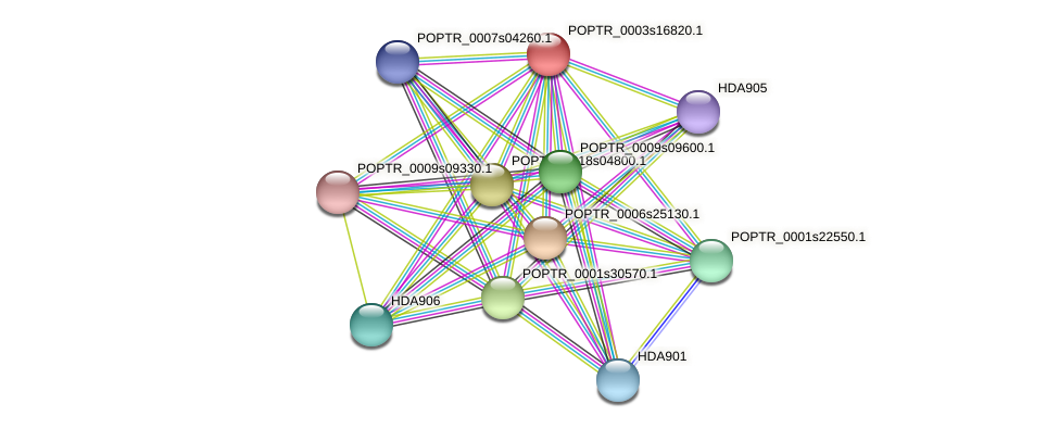 POPTR_0003s16820.1 protein (Populus trichocarpa) - STRING interaction network