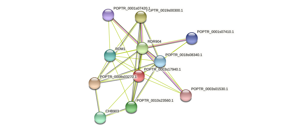 POPTR_0003s17940.1 protein (Populus trichocarpa) - STRING interaction network