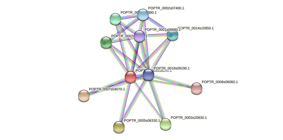 POPTR_0003s18200.1 protein (Populus trichocarpa) - STRING interaction network