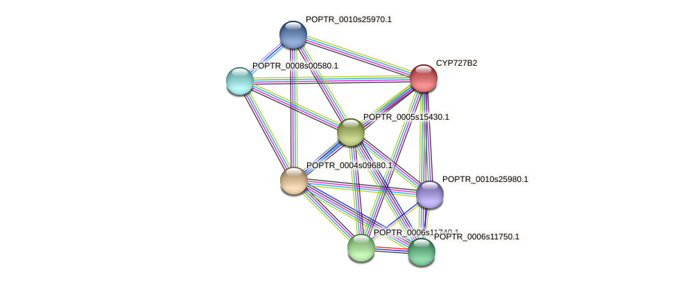 POPTR_0003s19150.1 protein (Populus trichocarpa) - STRING interaction network
