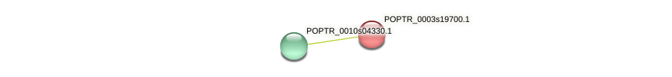 POPTR_0003s19700.1 protein (Populus trichocarpa) - STRING interaction network