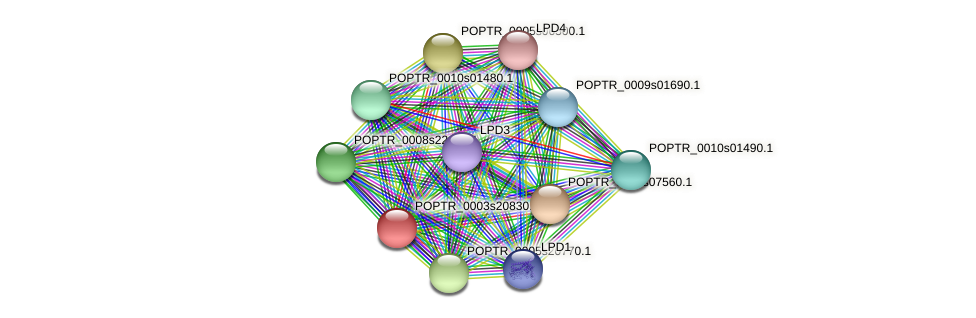 POPTR_0003s20830.1 protein (Populus trichocarpa) - STRING interaction network