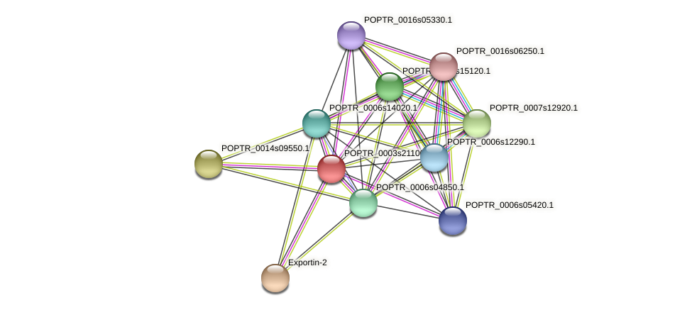 POPTR_0003s21100.1 protein (Populus trichocarpa) - STRING interaction network