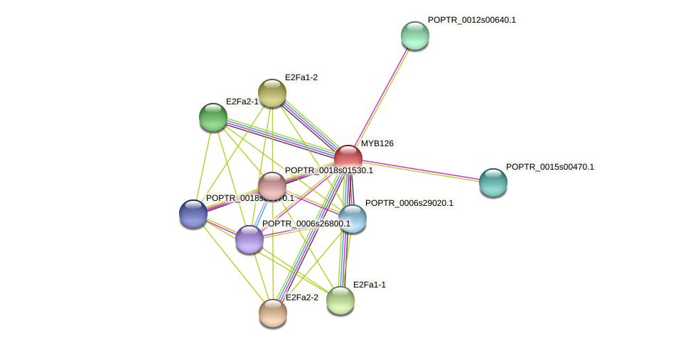 POPTR_0003s21120.1 protein (Populus trichocarpa) - STRING interaction network