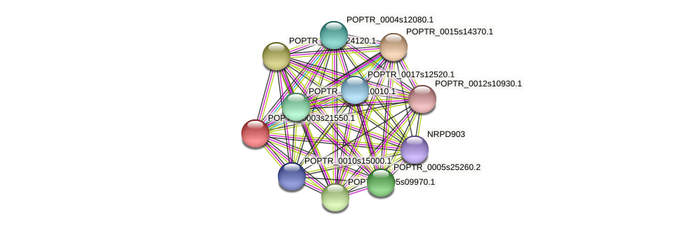 POPTR_0003s21550.1 protein (Populus trichocarpa) - STRING interaction network