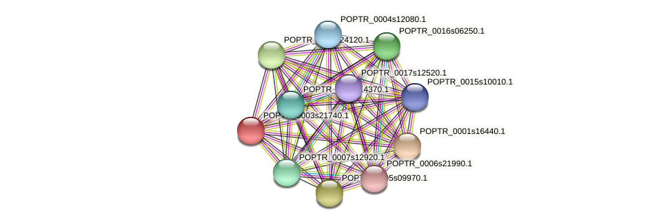 POPTR_0003s21740.1 protein (Populus trichocarpa) - STRING interaction network