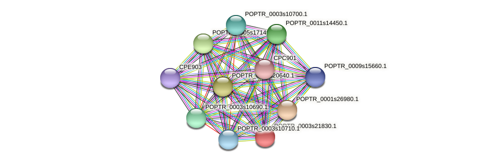 POPTR_0003s21830.1 protein (Populus trichocarpa) - STRING interaction network