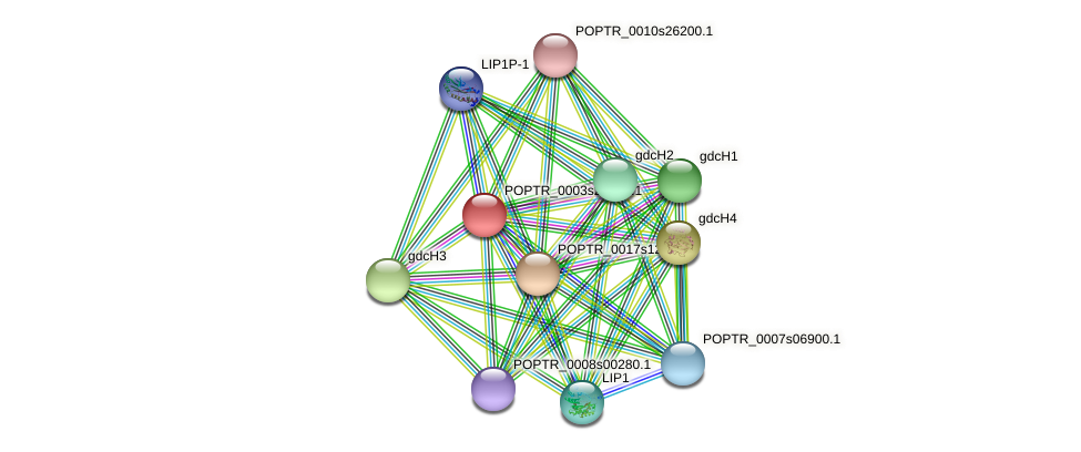 POPTR_0003s21880.1 protein (Populus trichocarpa) - STRING interaction network