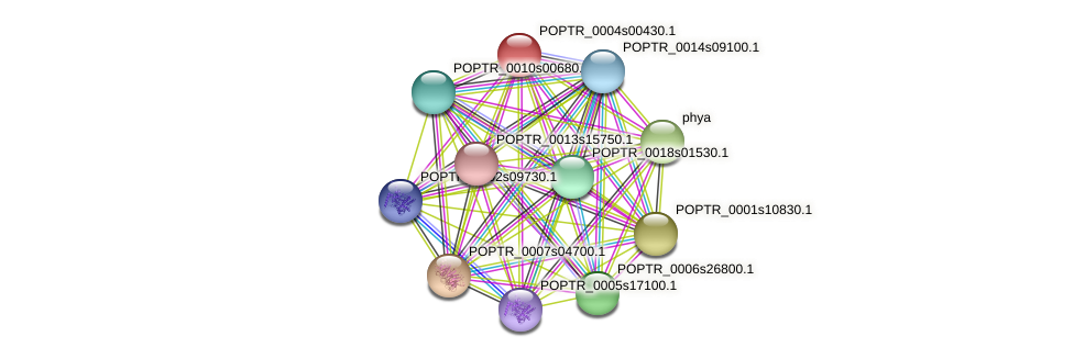 POPTR_0004s00430.1 protein (Populus trichocarpa) - STRING interaction network