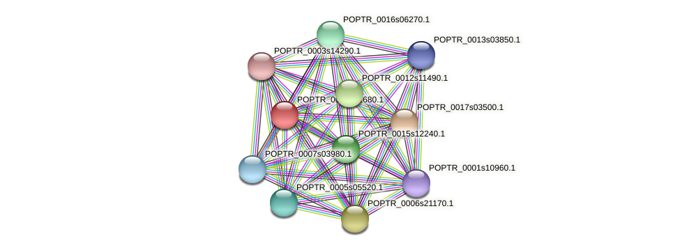 POPTR_0004s01680.1 protein (Populus trichocarpa) - STRING interaction network