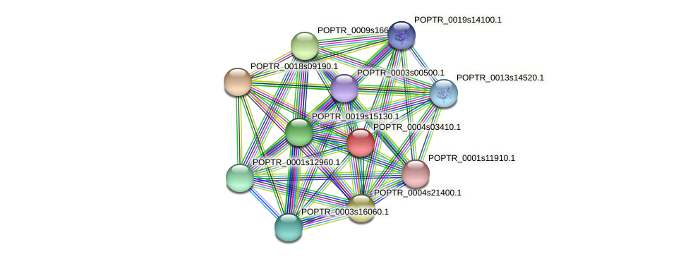 POPTR_0004s03410.1 protein (Populus trichocarpa) - STRING interaction network