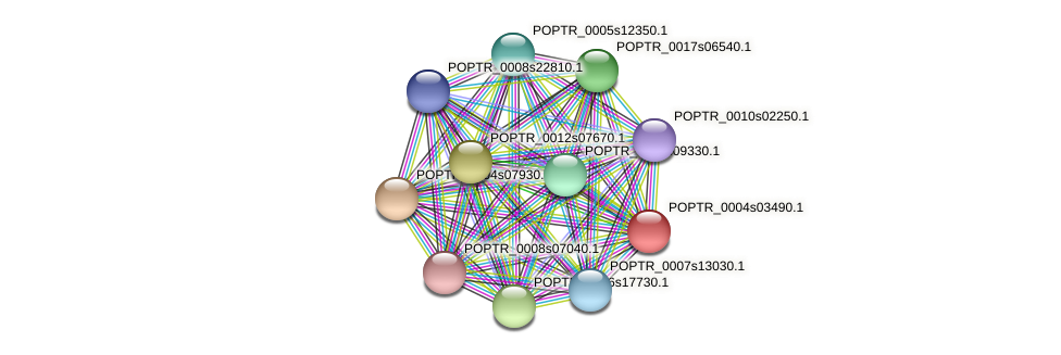 POPTR_0004s03490.1 protein (Populus trichocarpa) - STRING interaction network