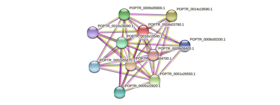 POPTR_0004s03780.1 protein (Populus trichocarpa) - STRING interaction network