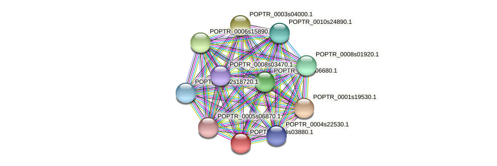 POPTR_0004s03880.1 protein (Populus trichocarpa) - STRING interaction network