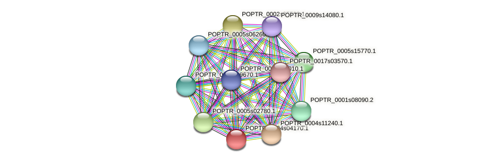 POPTR_0004s04170.1 protein (Populus trichocarpa) - STRING interaction network