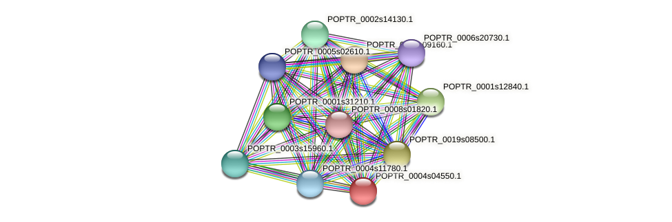 POPTR_0004s04550.1 protein (Populus trichocarpa) - STRING interaction network