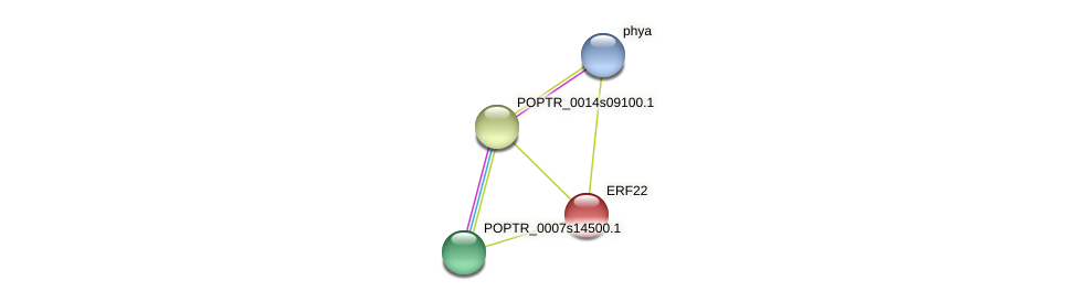 POPTR_0004s05110.1 protein (Populus trichocarpa) - STRING interaction network