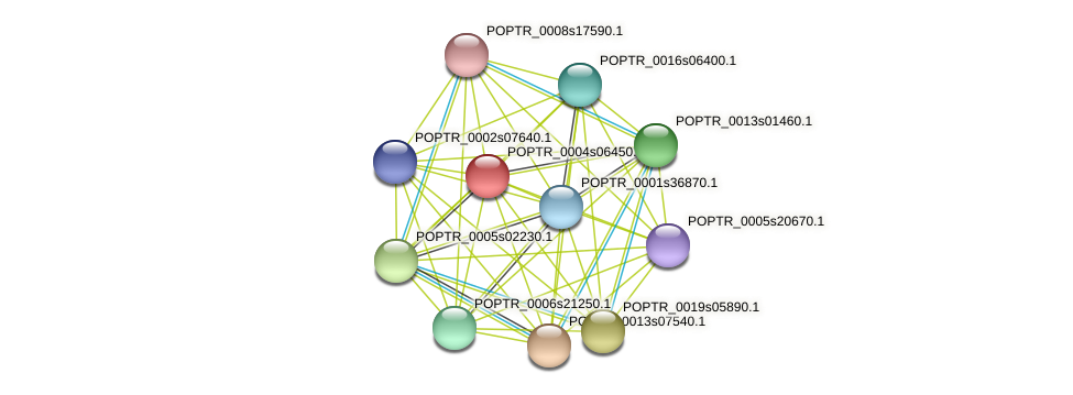 POPTR_0004s06450.1 protein (Populus trichocarpa) - STRING interaction network