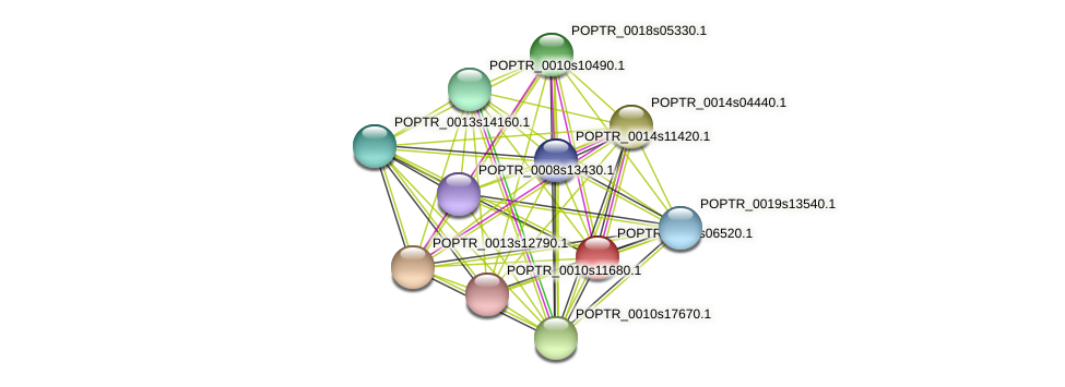 POPTR_0004s06520.1 protein (Populus trichocarpa) - STRING interaction network