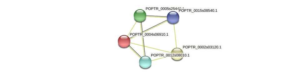 POPTR_0004s06910.1 protein (Populus trichocarpa) - STRING interaction network