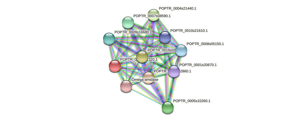 POPTR_0004s07320.1 protein (Populus trichocarpa) - STRING interaction network