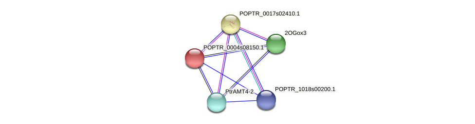 POPTR_0004s08150.1 protein (Populus trichocarpa) - STRING interaction network