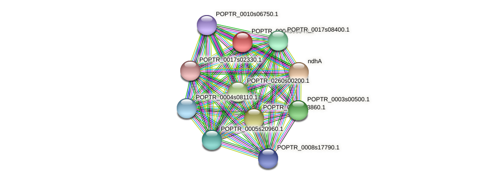 POPTR_0004s08940.1 protein (Populus trichocarpa) - STRING interaction network