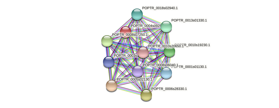 POPTR_0004s09250.1 protein (Populus trichocarpa) - STRING interaction network