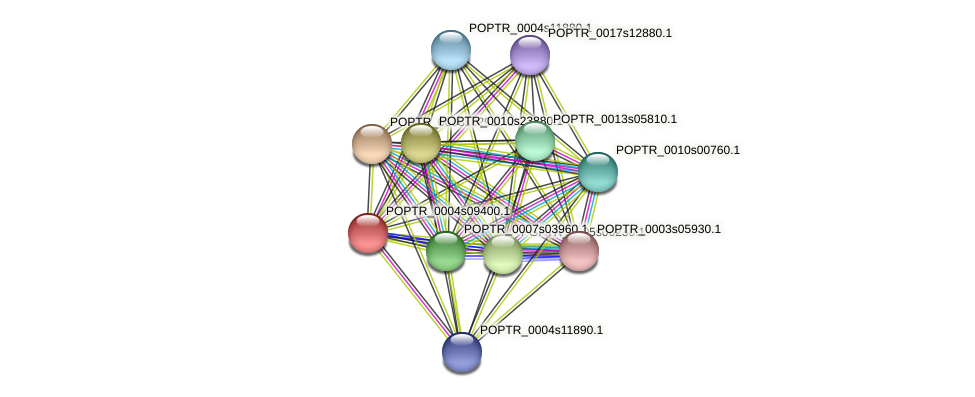 POPTR_0004s09400.1 protein (Populus trichocarpa) - STRING interaction network