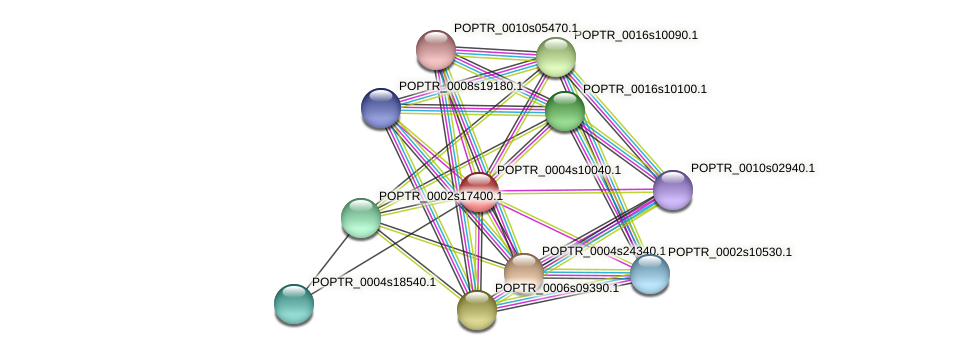 POPTR_0004s10040.1 protein (Populus trichocarpa) - STRING interaction network