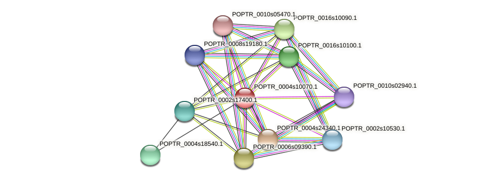POPTR_0004s10070.1 protein (Populus trichocarpa) - STRING interaction network
