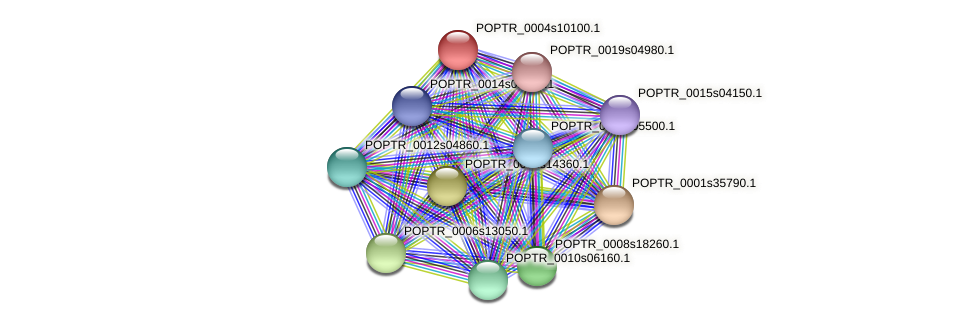 POPTR_0004s10100.1 protein (Populus trichocarpa) - STRING interaction network