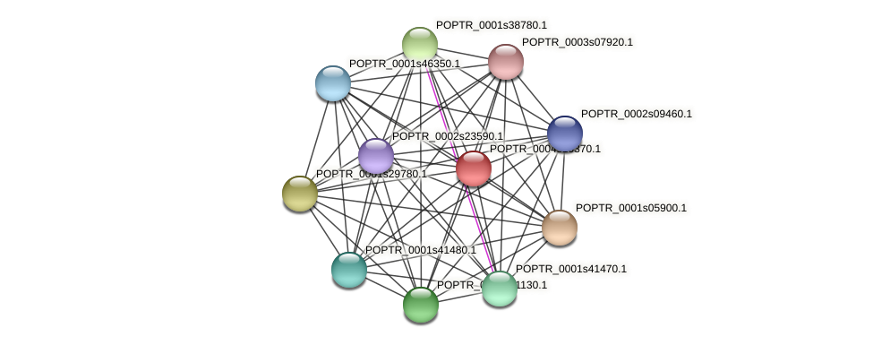 POPTR_0004s10370.1 protein (Populus trichocarpa) - STRING interaction network