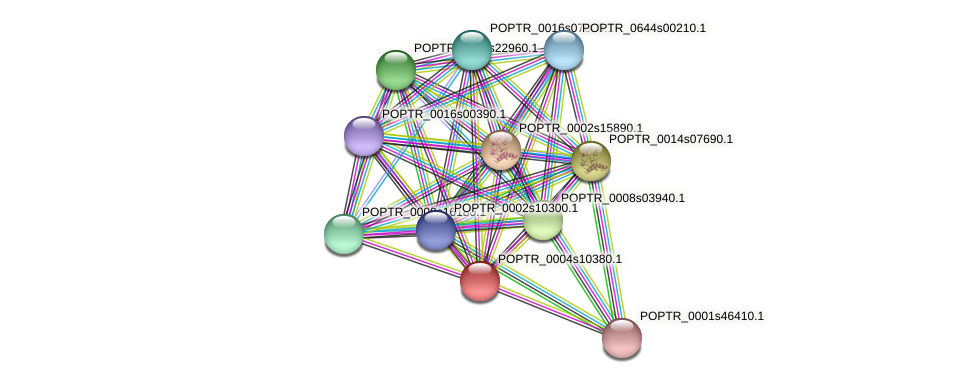 POPTR_0004s10380.1 protein (Populus trichocarpa) - STRING interaction network