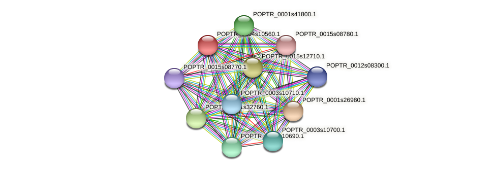 POPTR_0004s10560.1 protein (Populus trichocarpa) - STRING interaction network