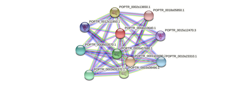 POPTR_0004s10640.1 protein (Populus trichocarpa) - STRING interaction network