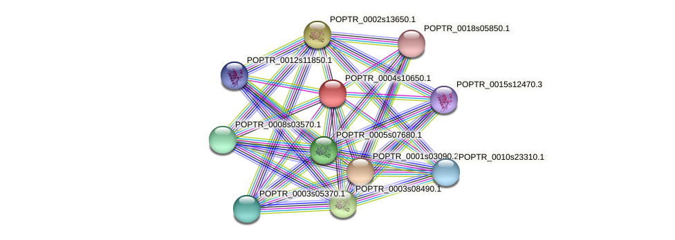 POPTR_0004s10650.1 protein (Populus trichocarpa) - STRING interaction network
