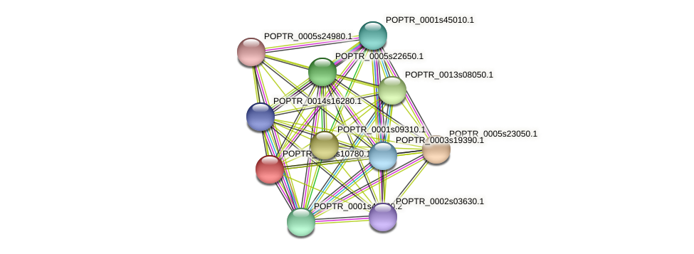 POPTR_0004s10780.1 protein (Populus trichocarpa) - STRING interaction network