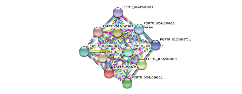 POPTR_0004s11240.1 protein (Populus trichocarpa) - STRING interaction network