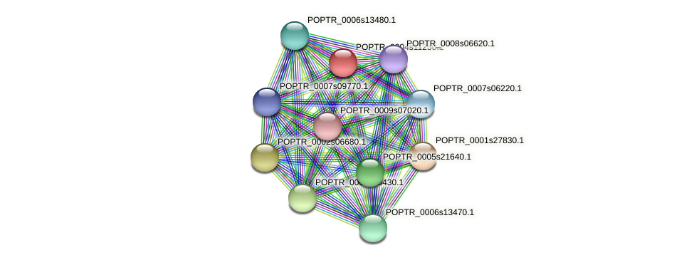 POPTR_0004s11250.1 protein (Populus trichocarpa) - STRING interaction network