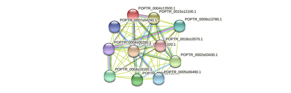 POPTR_0004s13500.1 protein (Populus trichocarpa) - STRING interaction network