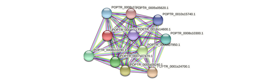 POPTR_0004s13700.1 protein (Populus trichocarpa) - STRING interaction network