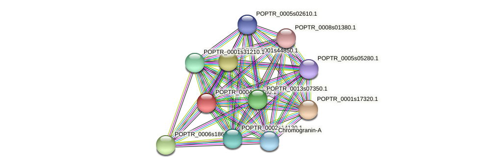 POPTR_0004s14780.1 protein (Populus trichocarpa) - STRING interaction network