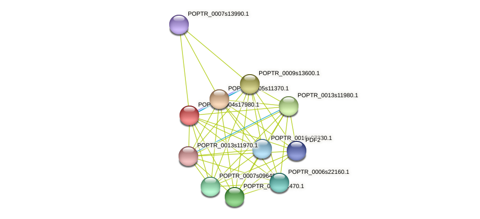 POPTR_0004s17980.1 protein (Populus trichocarpa) - STRING interaction network