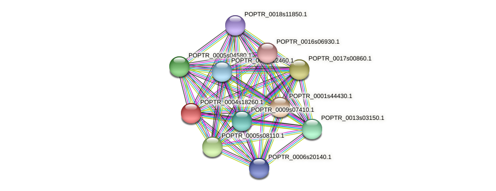 POPTR_0004s18260.1 protein (Populus trichocarpa) - STRING interaction network