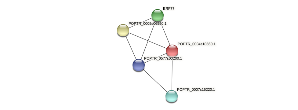 POPTR_0004s18560.1 protein (Populus trichocarpa) - STRING interaction network